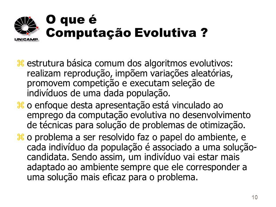 10 O que é Computação Evolutiva .