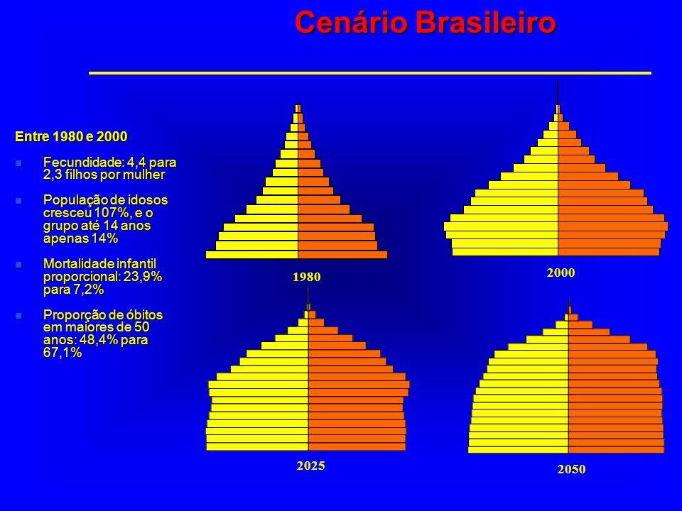 Entre 1980 e 2000 n Fecundidade: 4,4 para 2,3 filhos por mulher n População de idosos cresceu 107%, e o grupo até 14 anos apenas 14% n Mortalidade inf