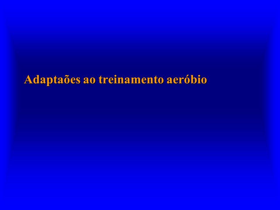 Adaptaões ao treinamento aeróbio
