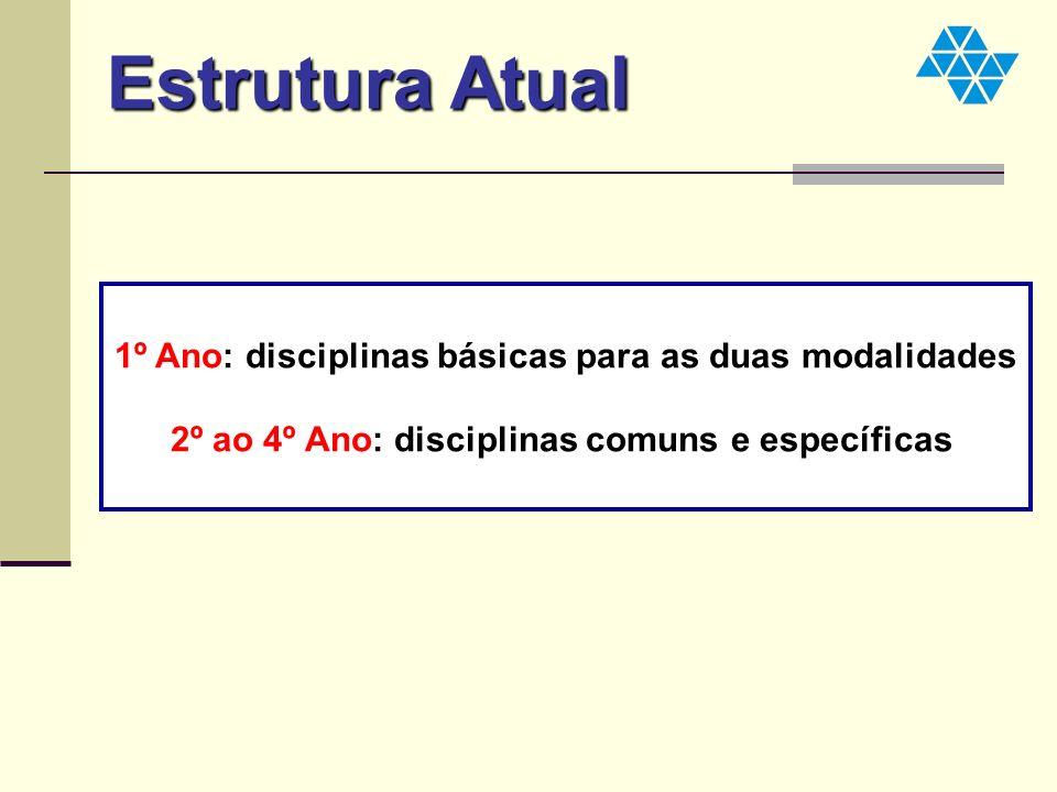 1º Ano: disciplinas básicas para as duas modalidades 2º ao 4º Ano: disciplinas comuns e específicas Estrutura Atual
