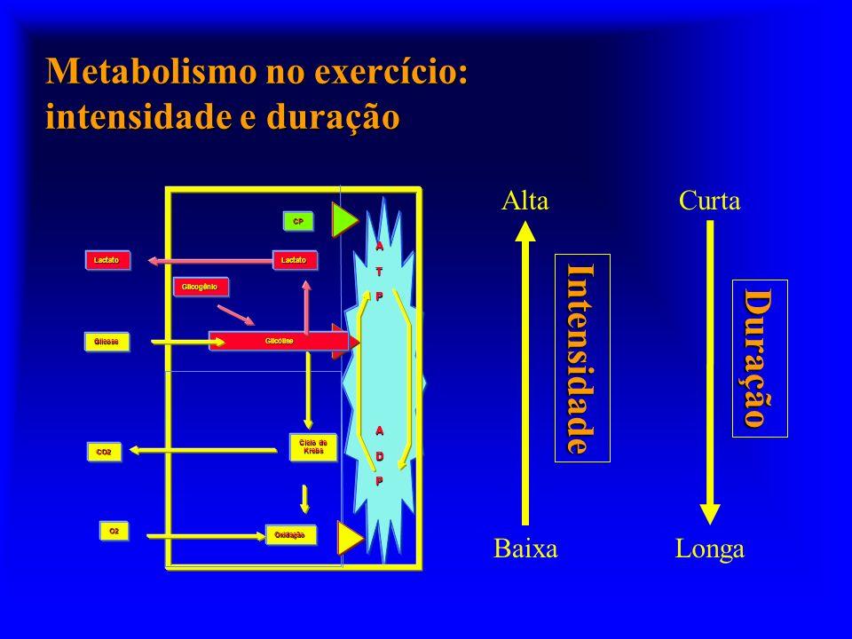 Metabolismo no exercício: intensidade e duração ATP ADP Glicogênio Glicólise Oxidação Ciclo de Krebs O2 CO2 Glicose CP LactatoLactato Alta Baixa Curta
