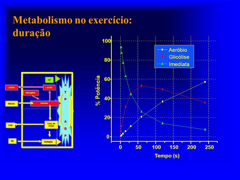 Metabolismo no exercício: duração ATP ADP Glicogênio Glicólise Oxidação Ciclo de Krebs O2 CO2 Glicose CP LactatoLactato