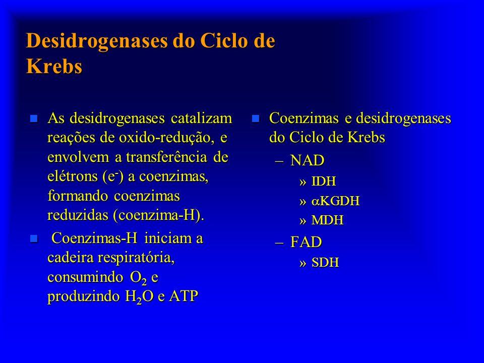 Desidrogenases do Ciclo de Krebs n As desidrogenases catalizam reações de oxido-redução, e envolvem a transferência de elétrons (e - ) a coenzimas, fo