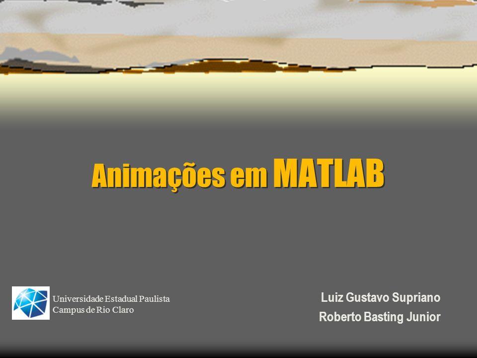 Animações em MATLAB Luiz Gustavo Supriano Roberto Basting Junior Universidade Estadual Paulista Campus de Rio Claro