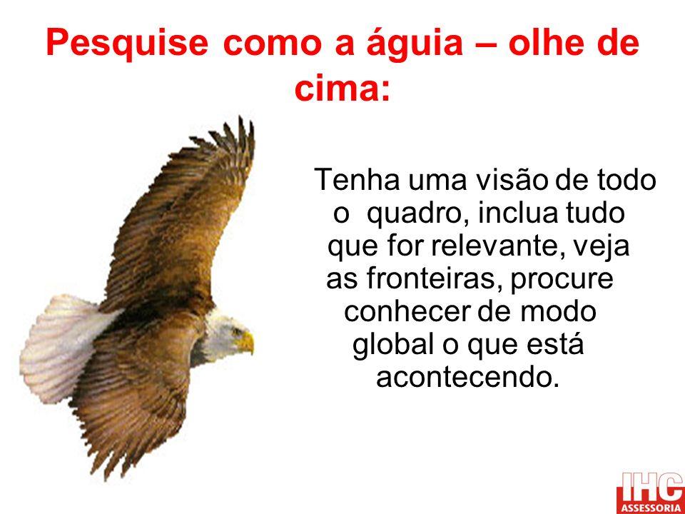 Pesquise como a águia – olhe de cima: Tenha uma visão de todo o quadro, inclua tudo que for relevante, veja as fronteiras, procure conhecer de modo global o que está acontecendo.
