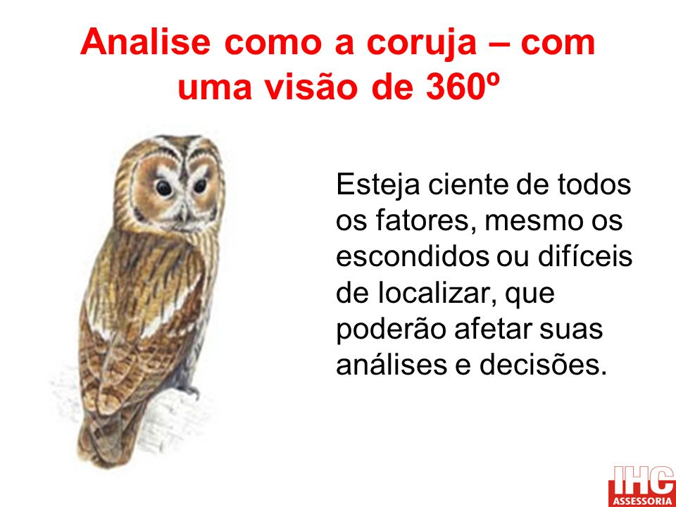 Analise como a coruja – com uma visão de 360º Esteja ciente de todos os fatores, mesmo os escondidos ou difíceis de localizar, que poderão afetar suas