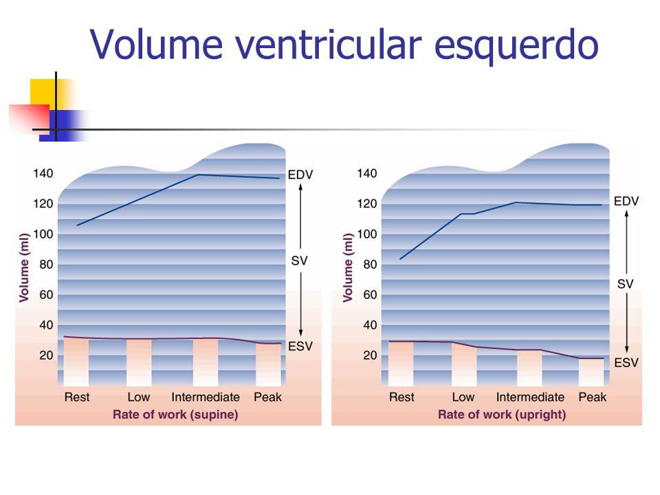 Volume ventricular esquerdo