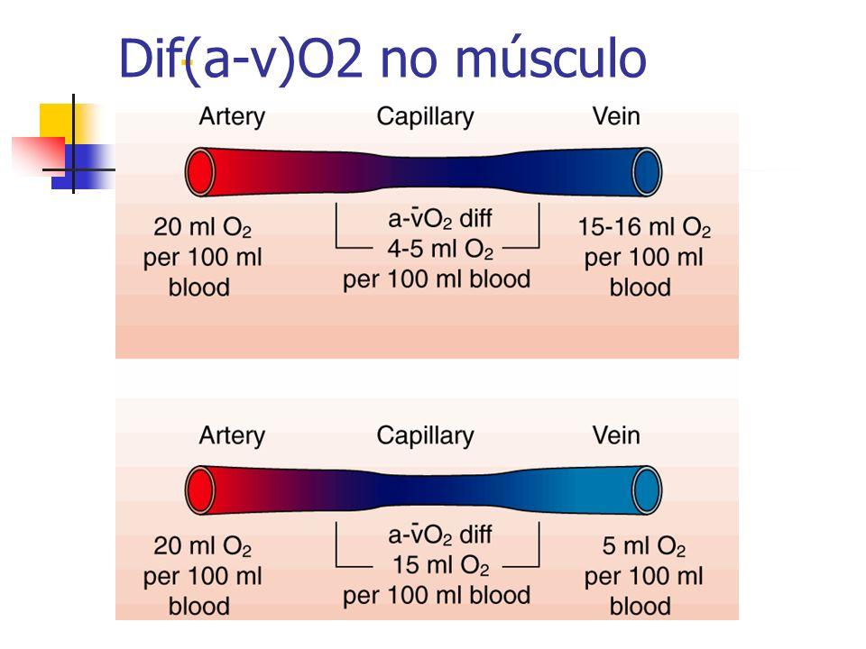 - Dif(a-v)O2 no músculo