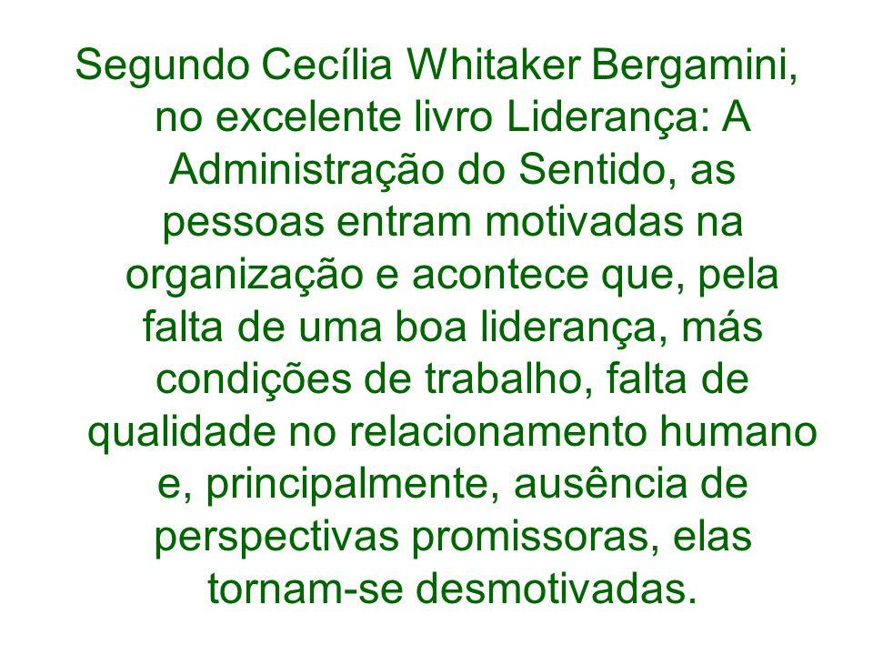 Segundo Cecília Whitaker Bergamini, no excelente livro Liderança: A Administração do Sentido, as pessoas entram motivadas na organização e acontece qu