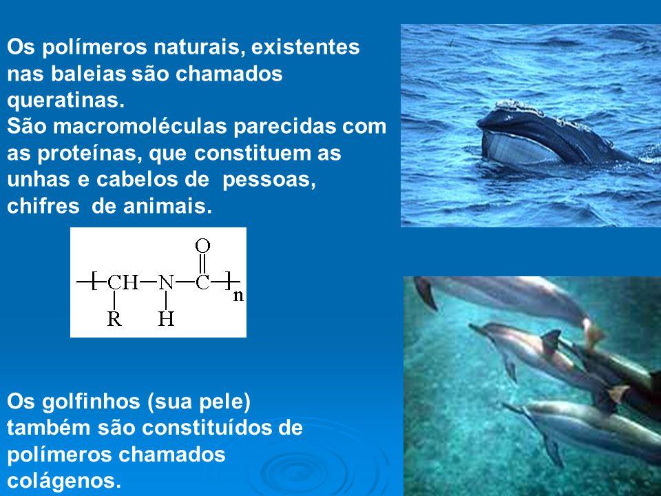 4 Os golfinhos (sua pele) também são constituídos de polímeros chamados colágenos. Os polímeros naturais, existentes nas baleias são chamados queratin