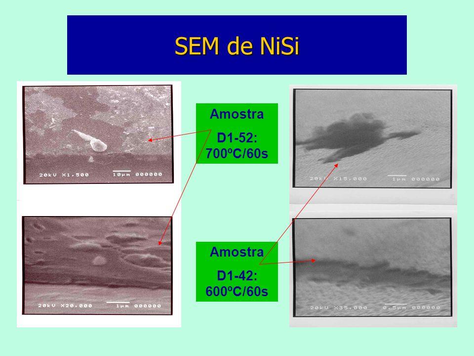 SEM de NiSi Amostra D1-52: 700ºC/60s Amostra D1-42: 600ºC/60s