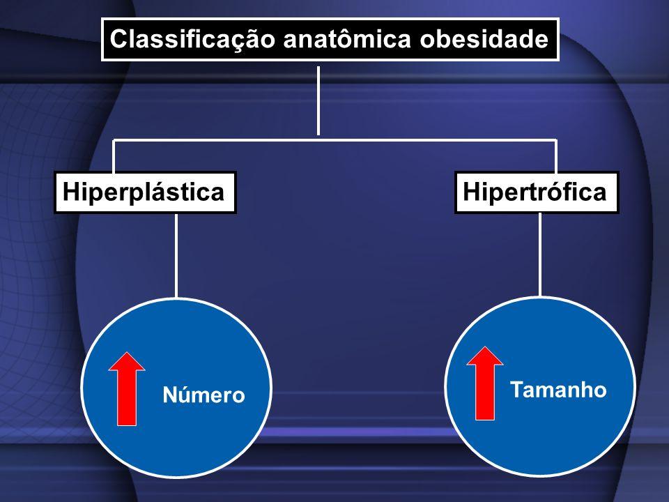 Classificação anatômica obesidade HiperplásticaHipertrófica Número Tamanho