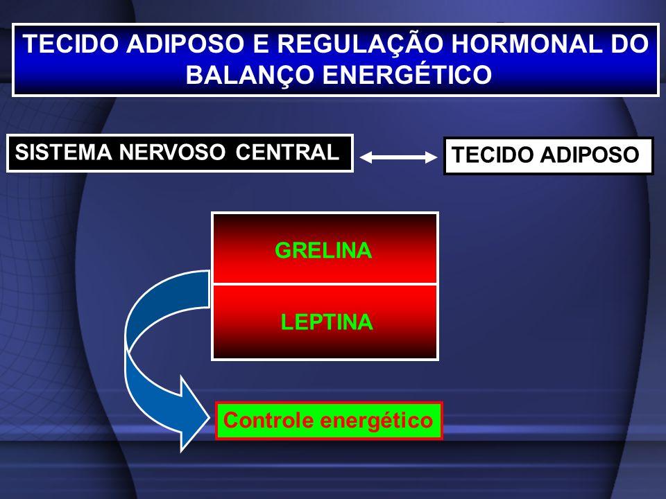 TECIDO ADIPOSO E REGULAÇÃO HORMONAL DO BALANÇO ENERGÉTICO LEPTINA GRELINA SISTEMA NERVOSO CENTRAL TECIDO ADIPOSO Controle energético