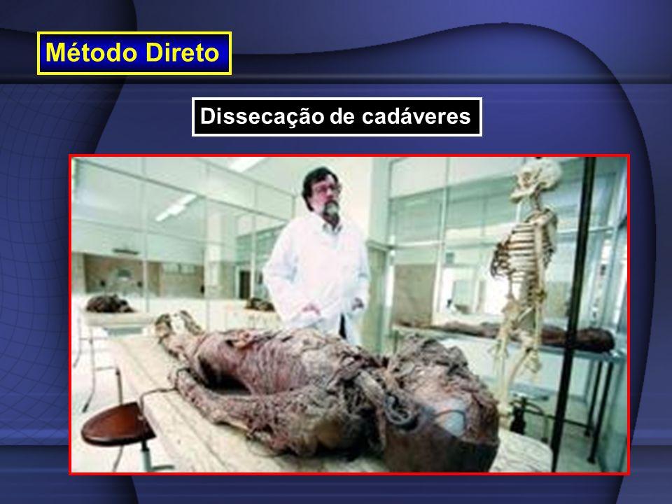 Método Direto Dissecação de cadáveres