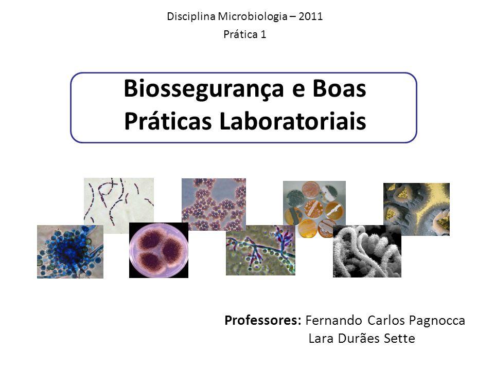 Biossegurança e Boas Práticas Laboratoriais Professores: Fernando Carlos Pagnocca Lara Durães Sette Disciplina Microbiologia – 2011 Prática 1