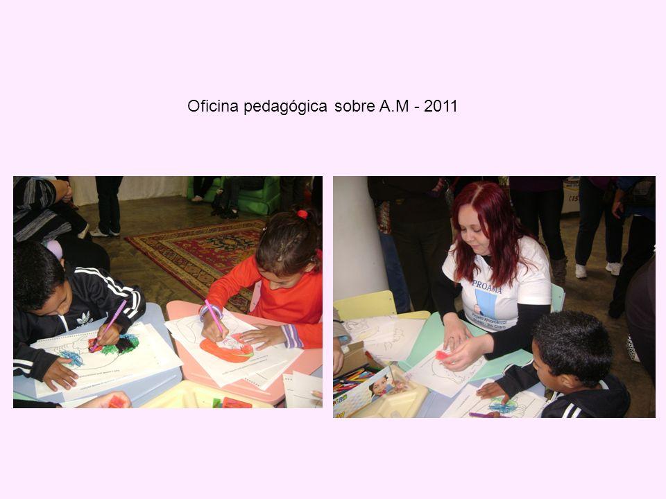 Oficina pedagógica sobre A.M - 2011