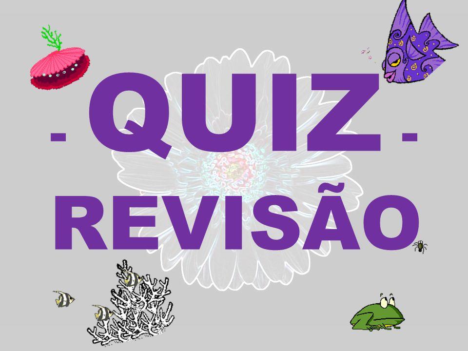 - QUIZ - REVISÃO