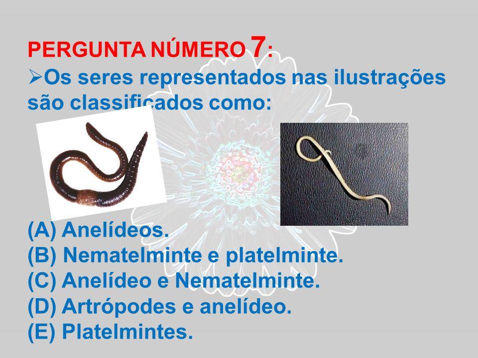 PERGUNTA NÚMERO 7 : Os seres representados nas ilustrações são classificados como: (A) Anelídeos. (B) Nematelminte e platelminte. (C) Anelídeo e Nemat