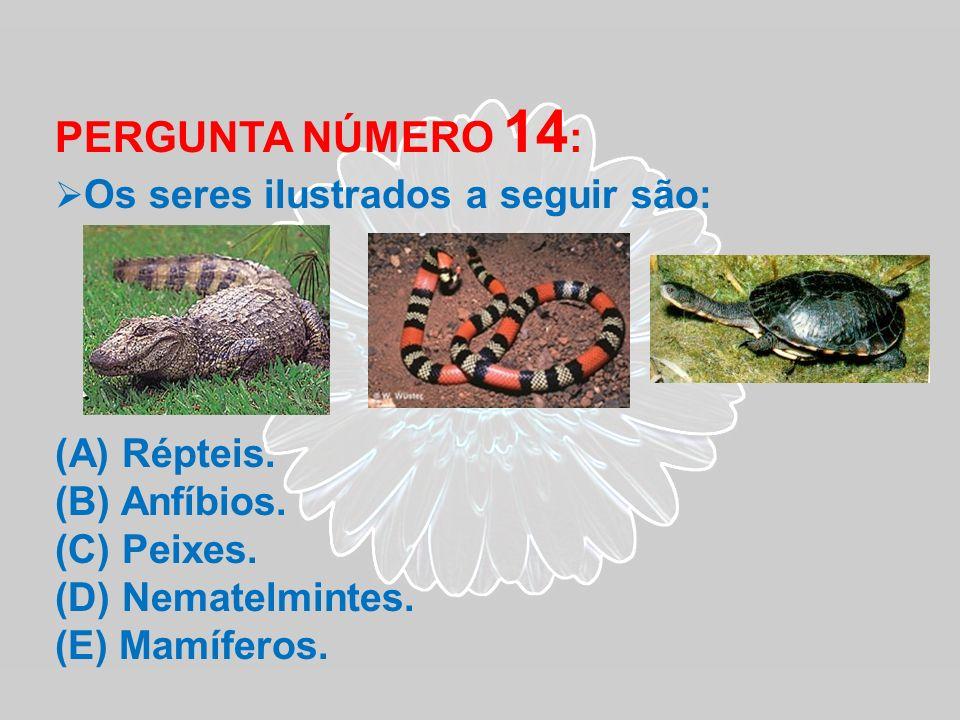 PERGUNTA NÚMERO 14 : Os seres ilustrados a seguir são: (A) Répteis. (B) Anfíbios. (C) Peixes. (D) Nematelmintes. (E) Mamíferos.