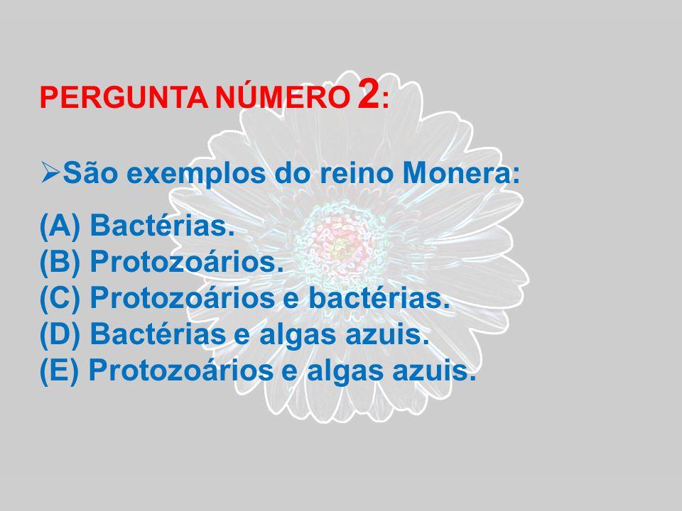 PERGUNTA NÚMERO 2 : São exemplos do reino Monera: (A) Bactérias. (B) Protozoários. (C) Protozoários e bactérias. (D) Bactérias e algas azuis. (E) Prot