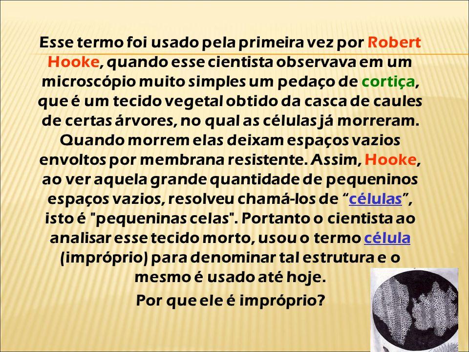 Esse termo foi usado pela primeira vez por Robert Hooke, quando esse cientista observava em um microscópio muito simples um pedaço de cortiça, que é u