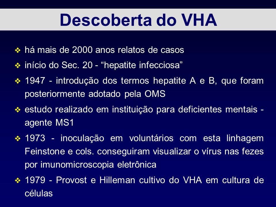 Descoberta do VHA v há mais de 2000 anos relatos de casos v início do Sec. 20 - hepatite infecciosa v 1947 - introdução dos termos hepatite A e B, que
