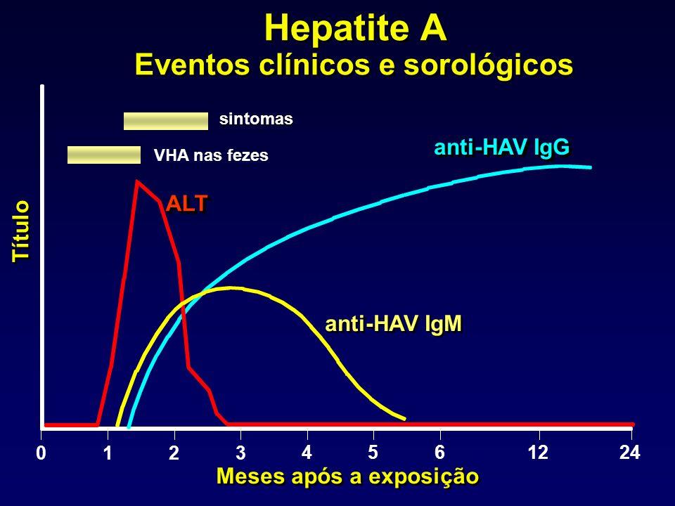 ALTALT anti-HAV IgM anti-HAV IgG Meses após a exposição Título 0123 4561224 Hepatite A Eventos clínicos e sorológicos Hepatite A Eventos clínicos e sorológicossintomas VHA nas fezes