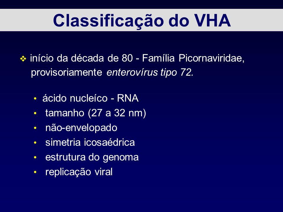 Classificação do VHA v início da década de 80 - Família Picornaviridae, provisoriamente enterovírus tipo 72. ácido nucleíco - RNA tamanho (27 a 32 nm)