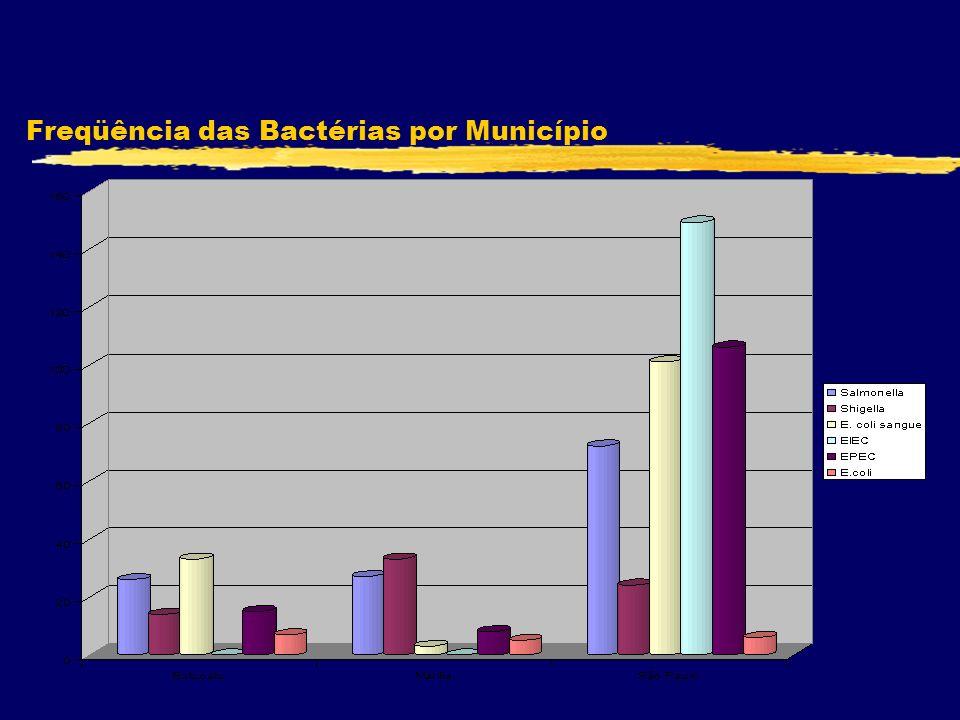 Freqüência das Bactérias por Município