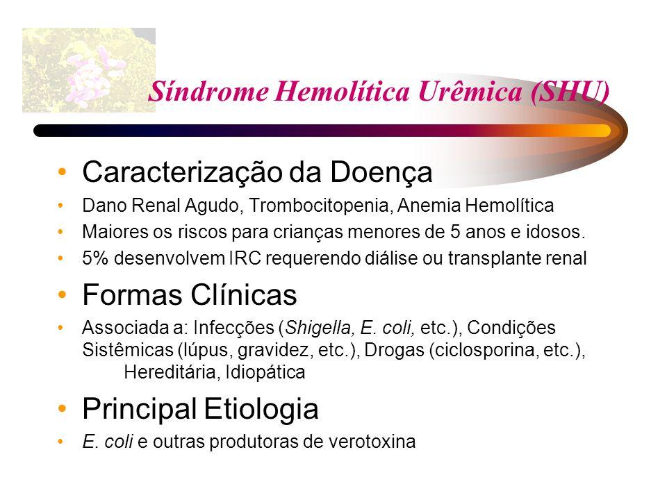 Síndrome Hemolítica Urêmica (SHU) Caracterização da Doença Dano Renal Agudo, Trombocitopenia, Anemia Hemolítica Maiores os riscos para crianças menore