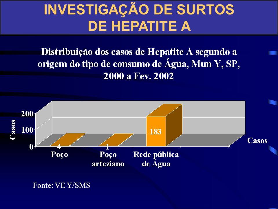 INVESTIGAÇÃO DE SURTOS DE HEPATITE A Fonte: Relatório VE Y