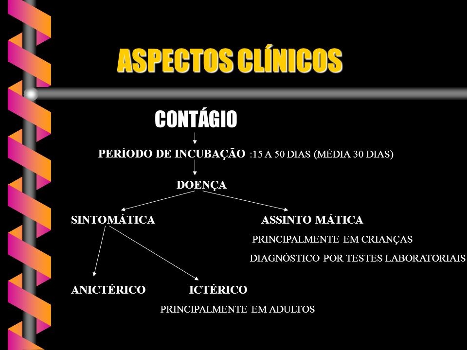 ASPECTOS CLÍNICOS ASPECTOS CLÍNICOS CONTÁGIO CONTÁGIO PERÍODO DE INCUBAÇÃO :15 A 50 DIAS (MÉDIA 30 DIAS) DOENÇA SINTOMÁTICA ASSINTO MÁTICA PRINCIPALMENTE EM CRIANÇAS DIAGNÓSTICO POR TESTES LABORATORIAIS ANICTÉRICO ICTÉRICO ICTÉRICO PRINCIPALMENTE EM ADULTOS