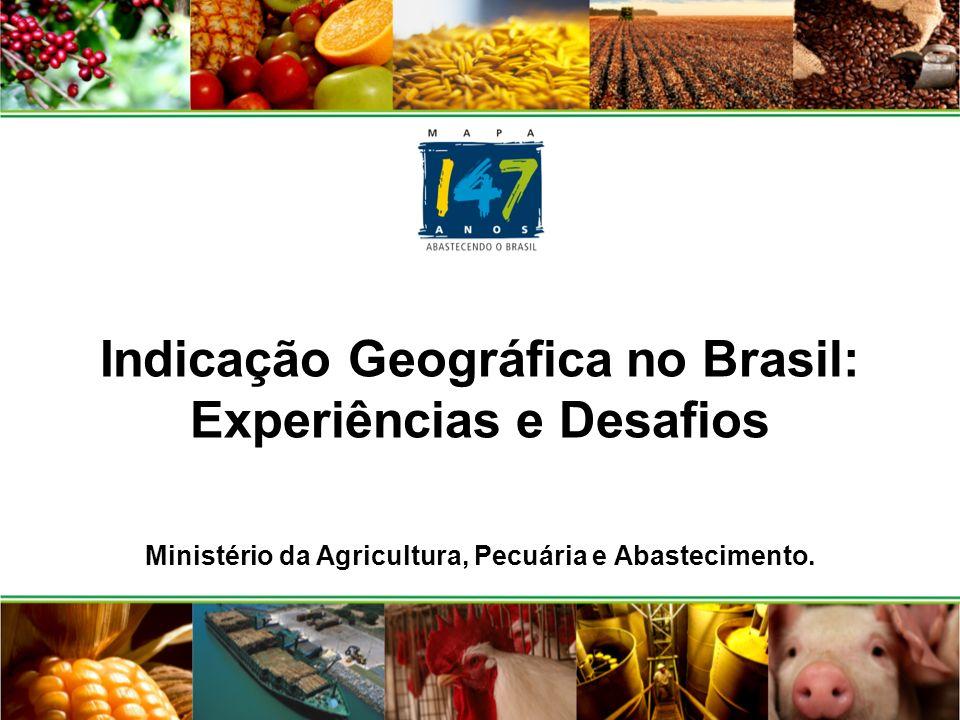 Coordenação de Incentivo à Indicação Geográfica de Produtos Agropecuários - CIG/DEPTA/SDC/MAPA- Equipe: Bivanilda Almeida Tapias; Patrícia Metzler Saraiva Rubens Soares cig@agricultura.gov.br Telefone: (61) 3218-2237/2918 email: cig@agricultura.gov.br