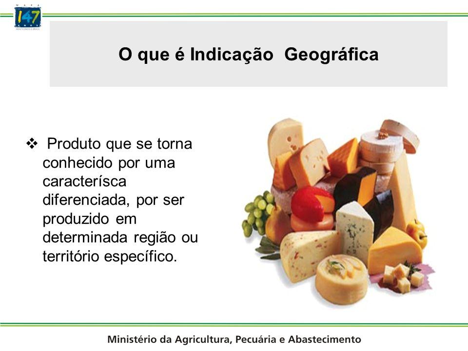 Indicações Geográfica Reconhecidas no Brasil 1º IG no Brasil (2002) Valorização das propriedades rurais: 200% a 500% em cinco anos; Incremento da Área Plantada; Sistemas de Produção de Qualidade: Uvas mais valorizadas; Aumento do Número de Vinícolas e do Padrão Tecnológico; Maior Oferta de Empregos; turismo;