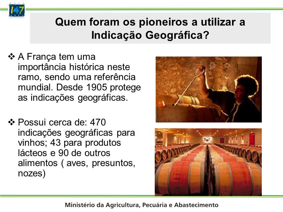 Indicações Geográfica Reconhecidas no Brasil 3º IG do Brasil (2006) Foco no desenvolvimento sustentável Pastagens naturais No abate: 2 a 5 % na remuneração do produtor; No varejo: 20 a 35% nos cortes comercializados.