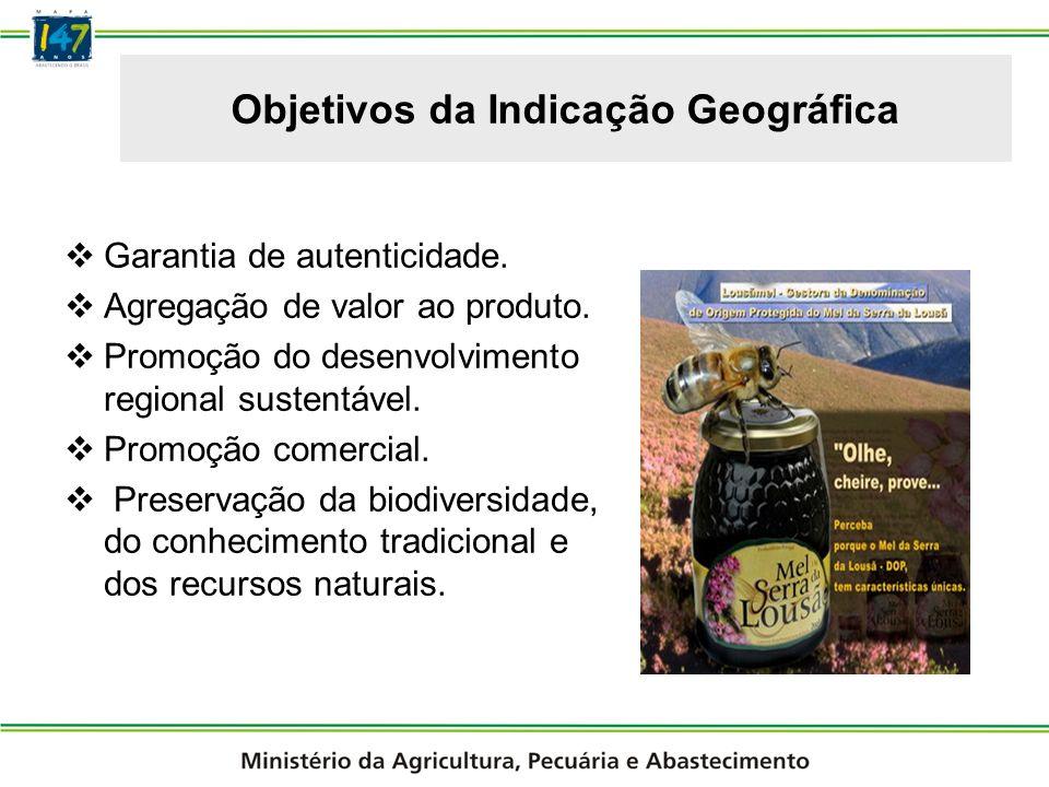 Minas Gerais Potenciais Indicações Geográficas no Brasil Cachaça de Salinas; Queijo Minas da Serra da Canastra ; Café da Serra do Caparaó;