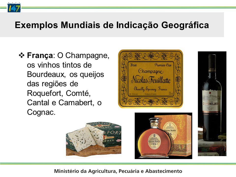 Exemplos Mundiais de Indicação Geográfica Portugal: O vinho da região do Porto e o queijo da Serra da Estrela.