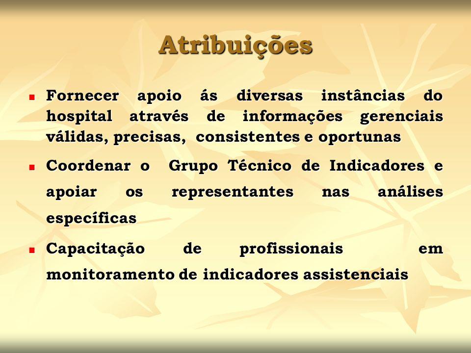 Atribuições Fornecer apoio ás diversas instâncias do hospital através de informações gerenciais válidas, precisas, consistentes e oportunas Fornecer a