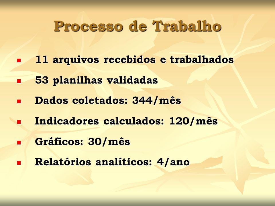 Processo de Trabalho 11 arquivos recebidos e trabalhados 11 arquivos recebidos e trabalhados 53 planilhas validadas 53 planilhas validadas Dados colet