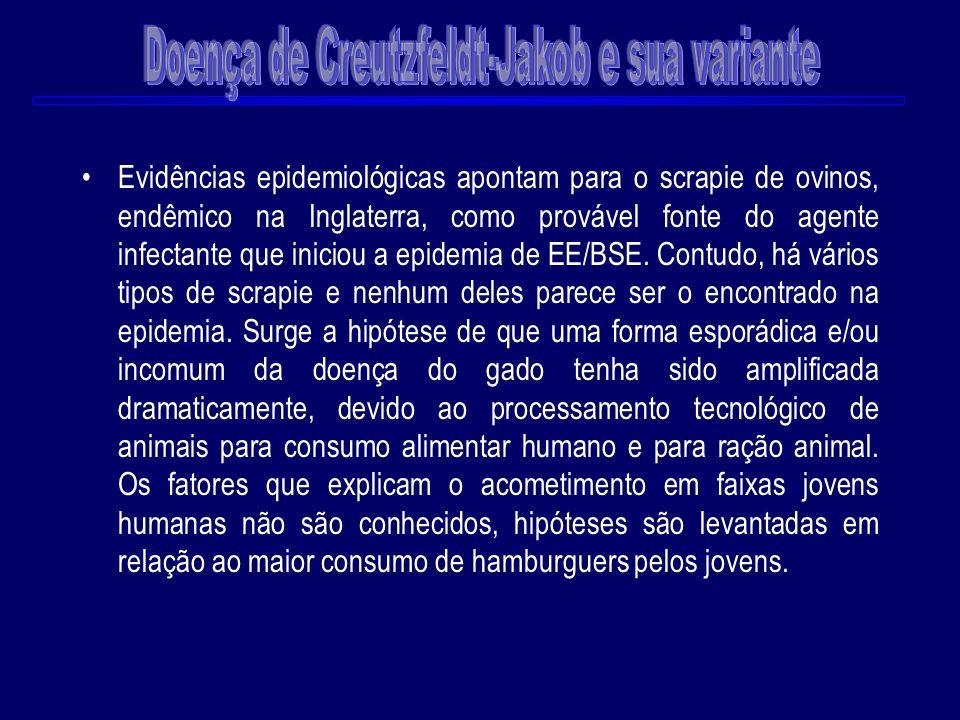 Evidências epidemiológicas apontam para o scrapie de ovinos, endêmico na Inglaterra, como provável fonte do agente infectante que iniciou a epidemia d