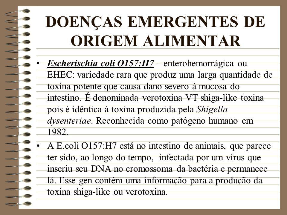 DOENÇAS EMERGENTES DE ORIGEM ALIMENTAR Escheríschia coli O157:H7 – enterohemorrágica ou EHEC: variedade rara que produz uma larga quantidade de toxina