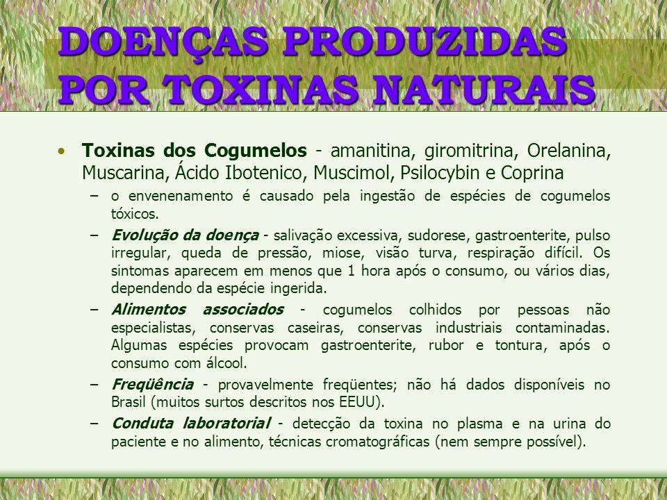 DOENÇAS PRODUZIDAS POR TOXINAS NATURAIS Aflatoxinas - aflatoxicoses –envenenamento resultante da ingestão de alimentos contaminados por certas espécies do fungo Aspergillus flavus e A.