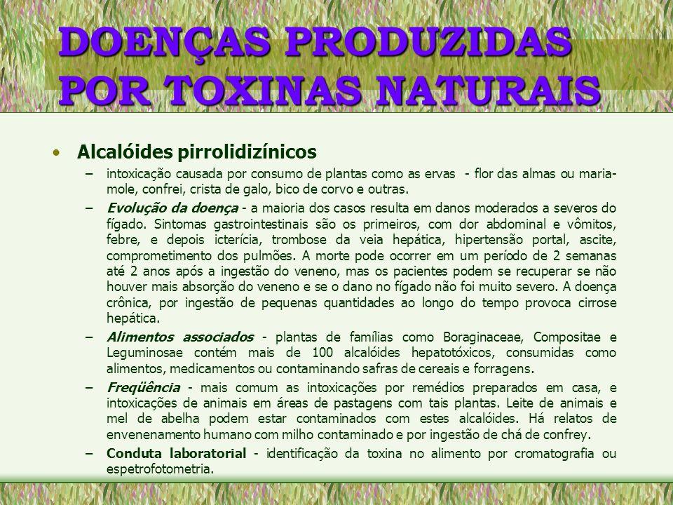 DOENÇAS PRODUZIDAS POR TOXINAS NATURAIS Alcalóides pirrolidizínicos –intoxicação causada por consumo de plantas como as ervas - flor das almas ou mari