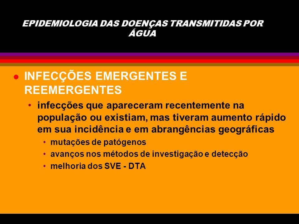 l BACTÉRIAS Vibrios - Vibrio Cholerae Shigueloses Salmonella typhy E.