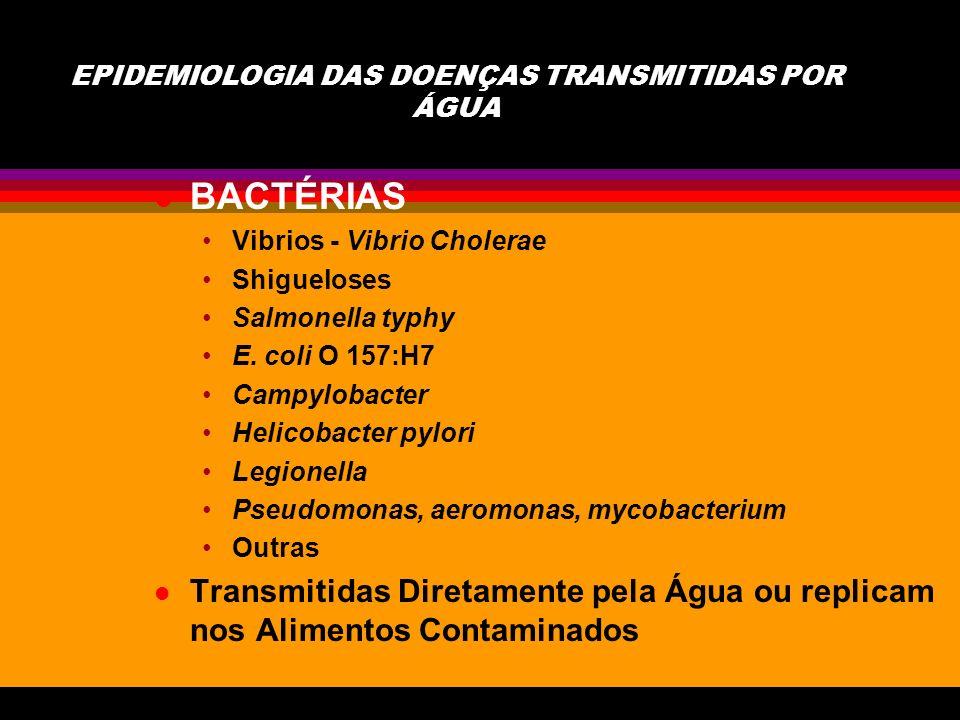 l VIRUS Hepatite A e E Norwalk e similares Rotavirus Calicivirus Poliovirus (Enterovirus tipo I, II, III) Outros Enterovirus e Outros l São geralmente limitados a hospedeiros humanos, veiculados por água ou alimentos contaminados por fezes, não se replicam na água ou alimento, estáveis no meio ambiente, baixa dose infectiva e geralmente resistentes aos métodos de controle e desinfecção utilizados para bactérias.