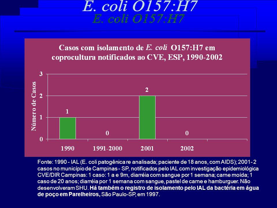 Fonte: 1990 - IAL (E. coli patogênica re analisada; paciente de 18 anos, com AIDS); 2001- 2 casos no município de Campinas - SP, notificados pelo IAL