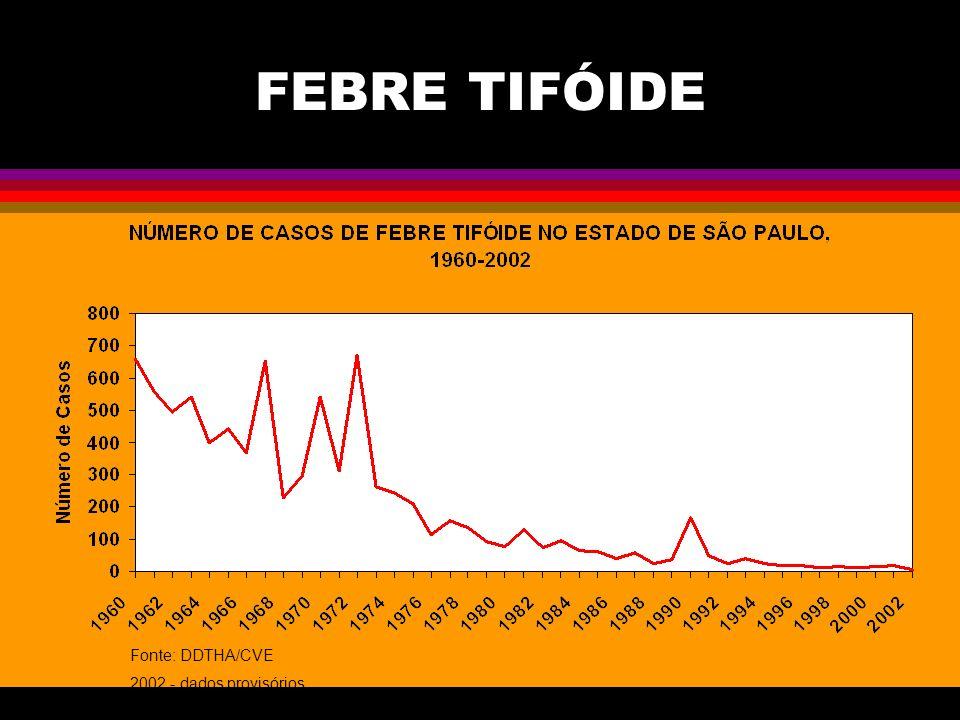 FEBRE TIFÓIDE Fonte: DDTHA/CVE 2002 - dados provisórios