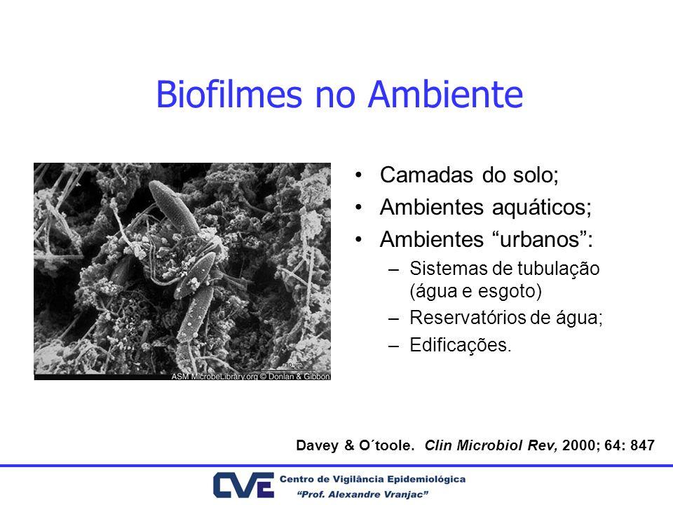 Biofilmes no Ambiente Camadas do solo; Ambientes aquáticos; Ambientes urbanos: –Sistemas de tubulação (água e esgoto) –Reservatórios de água; –Edifica