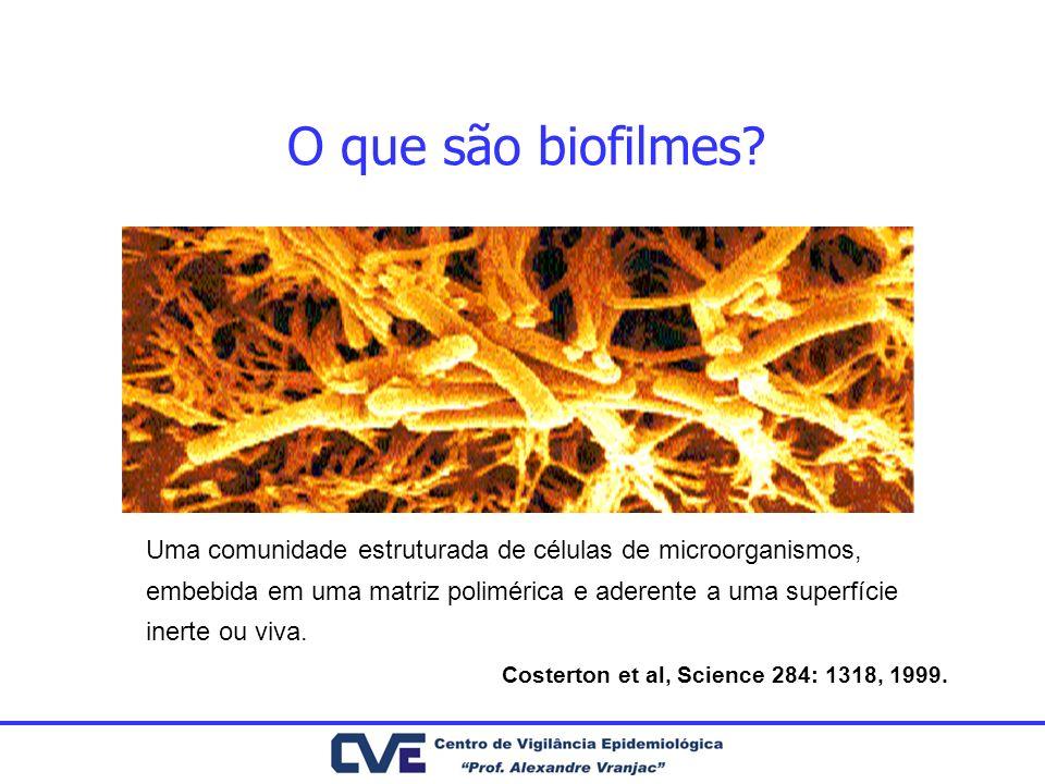 O que são biofilmes? Uma comunidade estruturada de células de microorganismos, embebida em uma matriz polimérica e aderente a uma superfície inerte ou
