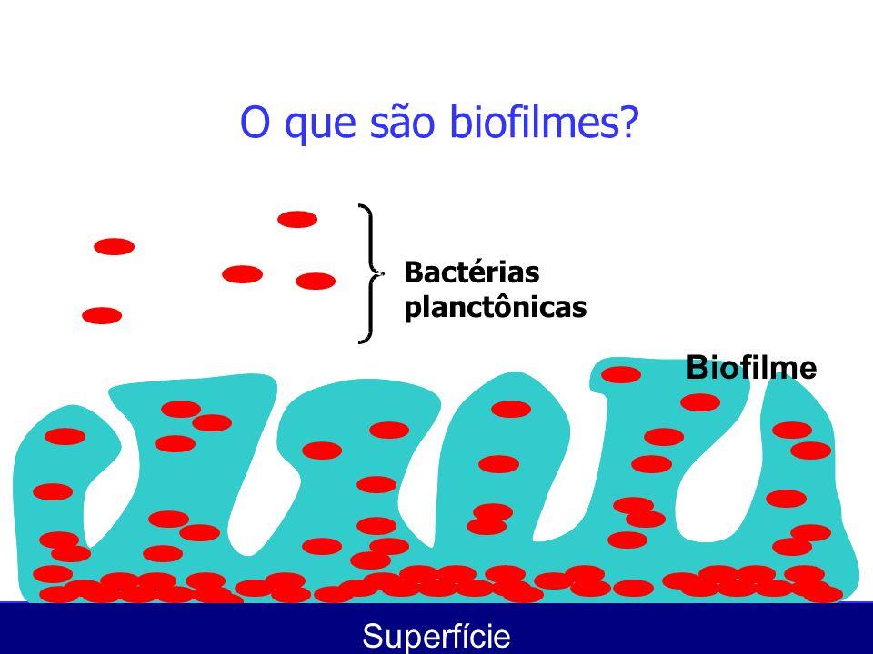Prevenção da formação de biofilmes...Prevenir a infecção...
